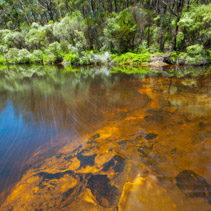 Smooth water flow over orange rocks in a forest