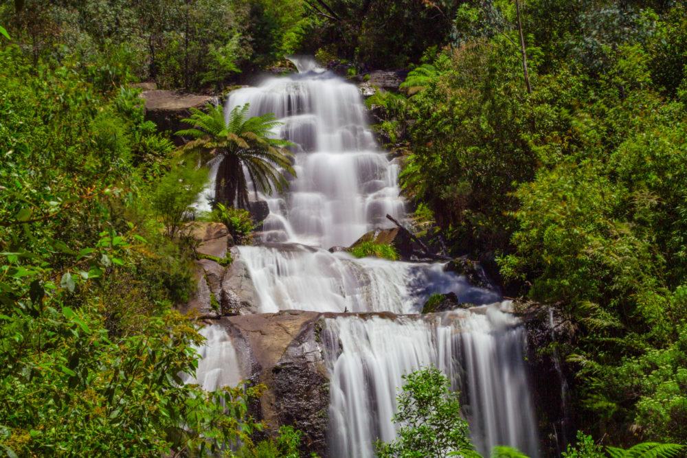 Beautiful Fainter Falls in native Australian Forest