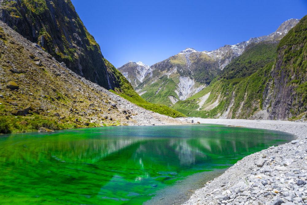 Green pond near Fox Glacier, New Zealand