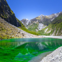 Green pond near Fox Glacier, New Zealand