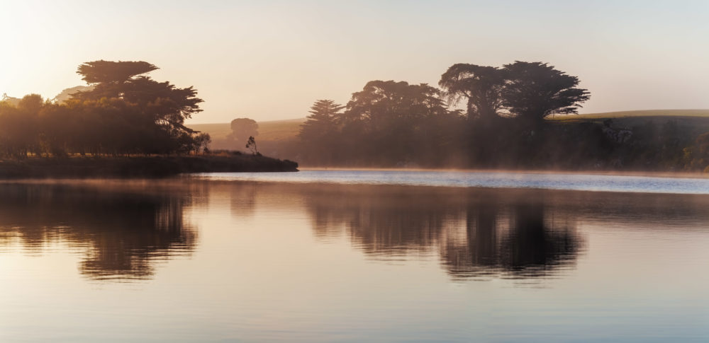 Tranquil landscape of early morning fog over calm river with trees