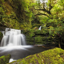 Small falls downstream from Mclean Falls, Catlins, South Island, New Zealand