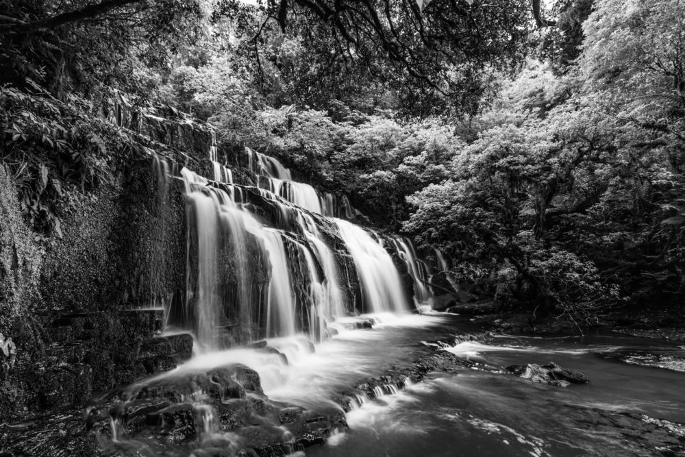 Purakaunui cascades waterfall in black and white, Catlins, South Island, New Zealand