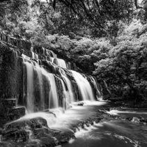 Purakaunui cascades waterfall in black and white, Catlins, South Island, New Zealand