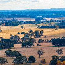 Australian countryside in winter near Melbourne, Victoria