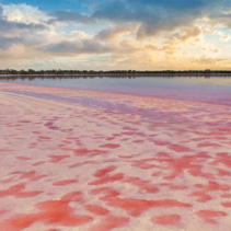 Loch Lel - pink lake at sunset, Victoria, Australia