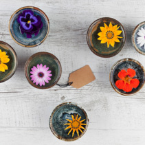 Colorful flowers floating in water in small ceramic bowls on rustic wooden table with gift tag. Top view with copy space.