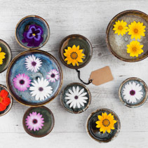Colorful flowers in ceramic bowls