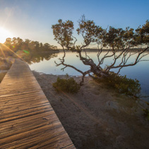 Sunset at the Merimbula Lake Boardwalk, Victoria, Australia