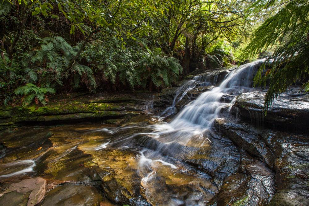 Leura Falls, Blue Mountains, Australia
