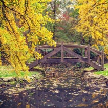 Picturesque wooden footbridge over a pond in Autumn
