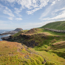 Phillip Island Nature Park - green hills and rugged coastline