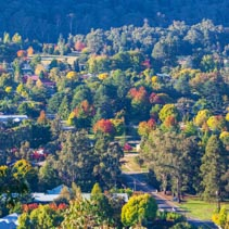 Rural town in autumn - green, yellow, and orange trees. Bright, Victoria, Australia