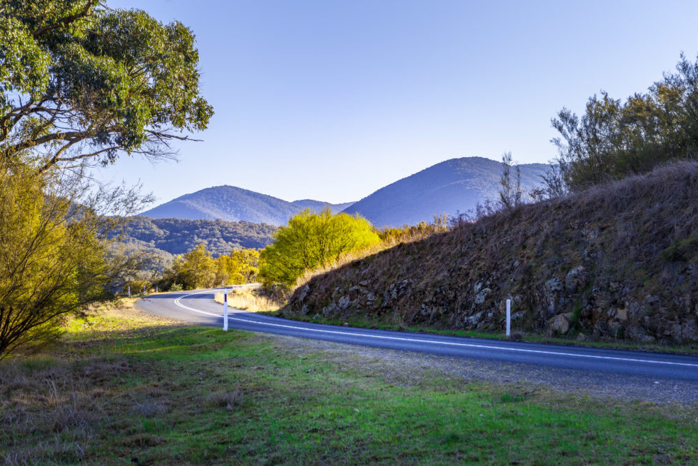Rural road bend among hills and trees in beautiful scenery at sunset