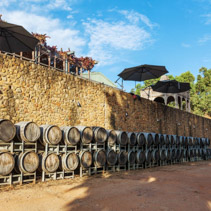 Rows of wooden wine barrels in vineyard in Australia