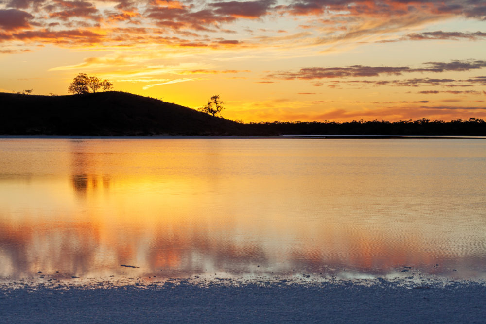Golden sunset with tree silhouettes blurred water reflections
