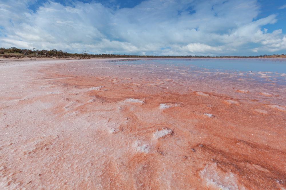 Vivid red Salt deposits of Lake Crossbie
