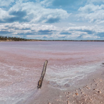 Pink Lake Becking Landscape