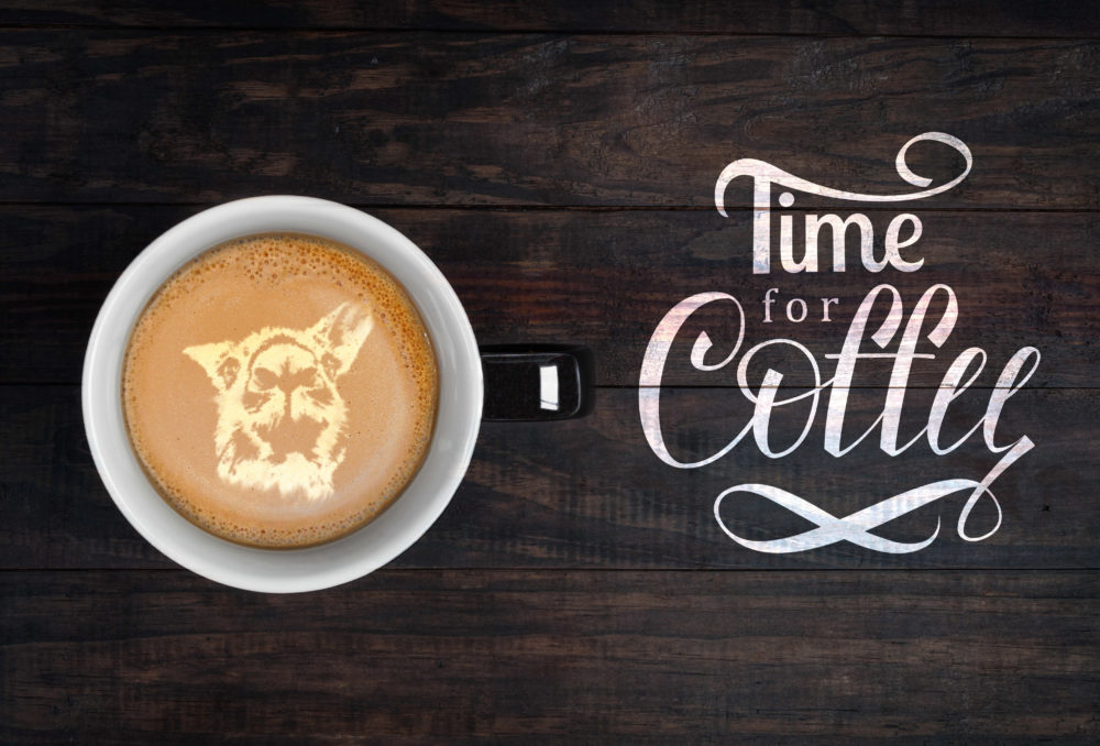 Latte art - portrait of kangaroo made on froth on a cup of coffee. Top view with Time For Coffee hand lettering